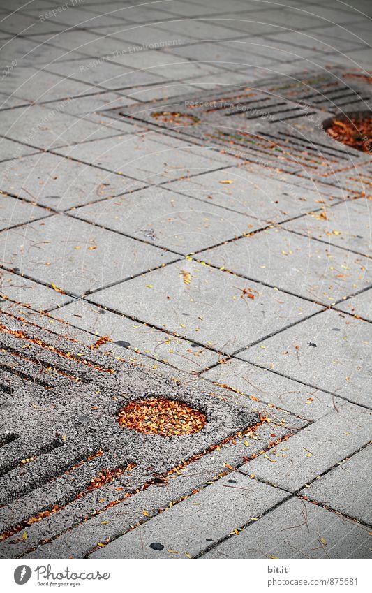 kreuzweise | Herbstlöcher Einsamkeit Blatt dunkel Traurigkeit Wege & Pfade grau Stein Linie trist Design Platz Beton Vergänglichkeit Trauer Sorge