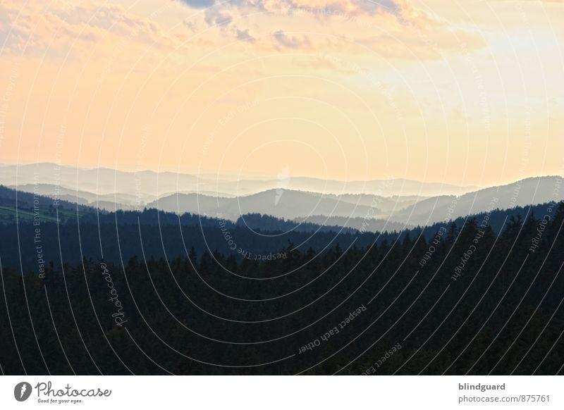 Run to the Hills Himmel Natur Ferien & Urlaub & Reisen Pflanze Sommer Sonne Wolken Ferne schwarz Berge u. Gebirge Umwelt gelb Freiheit Felsen Horizont orange