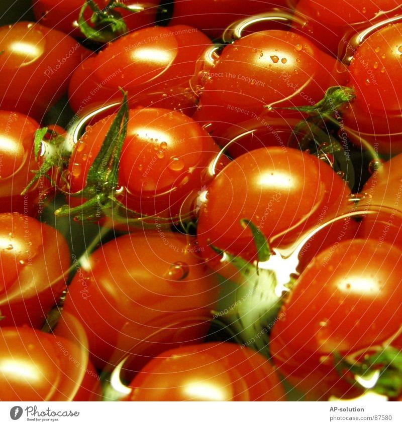 Tomaten Wasser grün rot Gesundheit orange Lebensmittel Ernährung Gesunde Ernährung Gemüse Teile u. Stücke Gastronomie Appetit & Hunger lecker Lust Tomate Vitamin