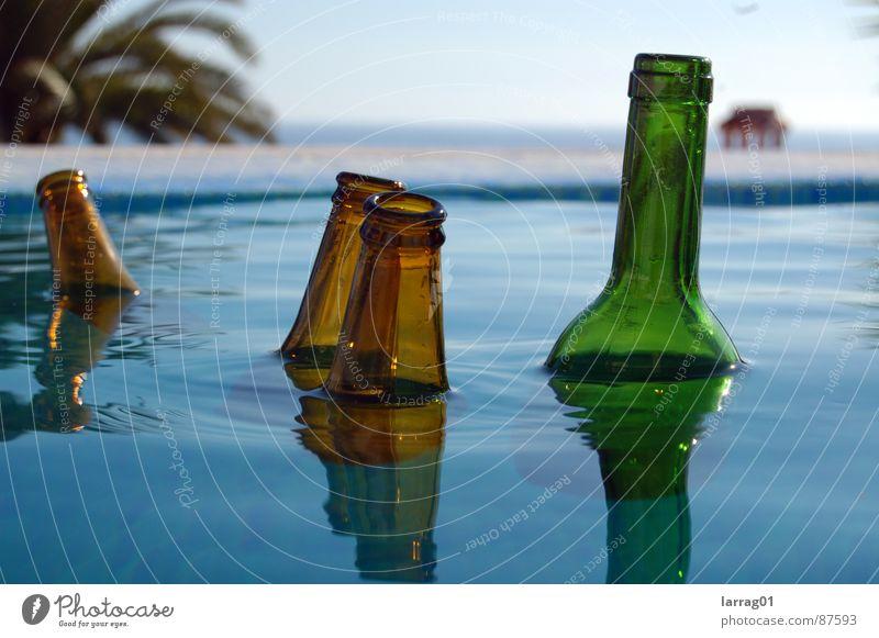 Dinge im Pool mehrere Elite grün braun Schwimmbad Meer Gelassenheit Im Wasser treiben Palme groß klein Spiegelbild Wellen Kreis Auswahl Stillleben wackeln