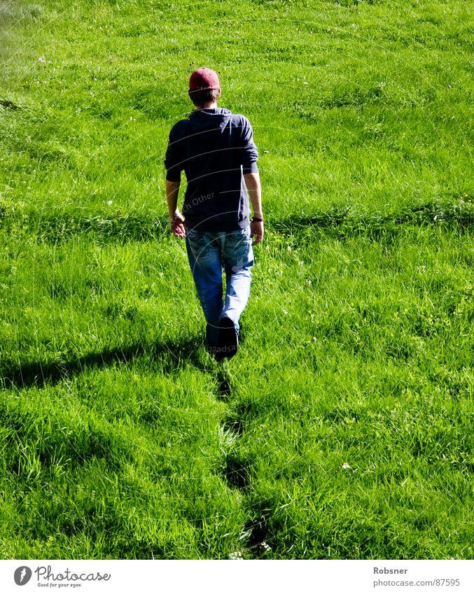 walk away grün rot Farbe Landschaft Wiese Freiheit Wege & Pfade Gras Deutschland gehen laufen nass hoch Trauer weich Rasen
