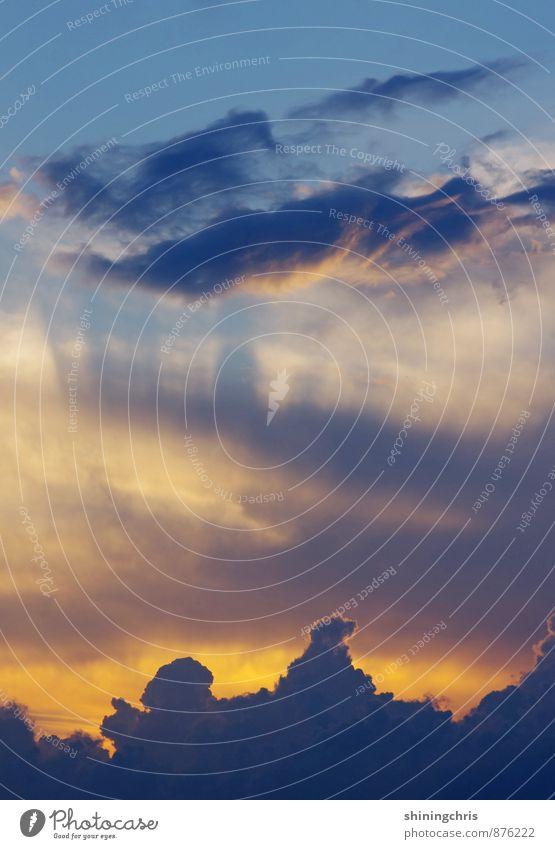 vanilla sky Natur Luft Himmel nur Himmel Wolken Horizont Sonnenaufgang Sonnenuntergang Sonnenlicht Sommer Herbst Wetter außergewöhnlich bedrohlich fantastisch