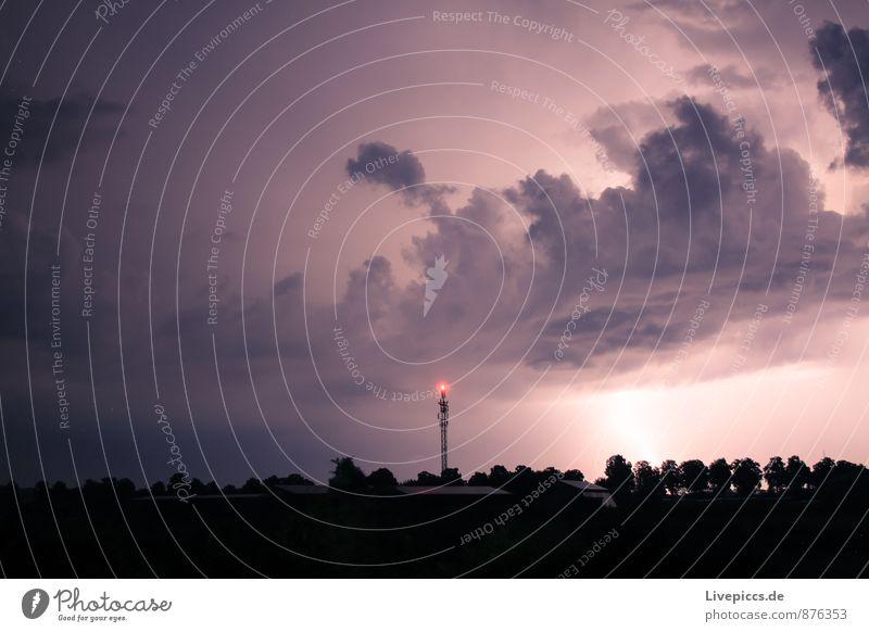 ...das letzte Umwelt Natur Landschaft Himmel Wolken Gewitterwolken Sommer Unwetter Blitze Pflanze Baum Feld leuchten dunkel gigantisch kalt rebellisch stark