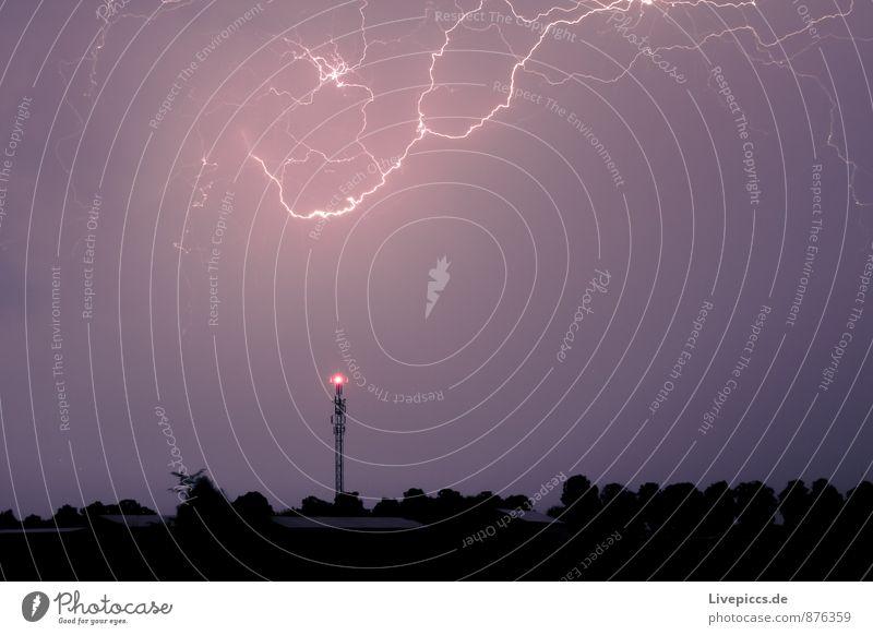 ...und noma Umwelt Natur Landschaft Urelemente Himmel Wolken Gewitterwolken Sommer Unwetter Blitze Pflanze Baum Feld Wald leuchten dunkel gigantisch