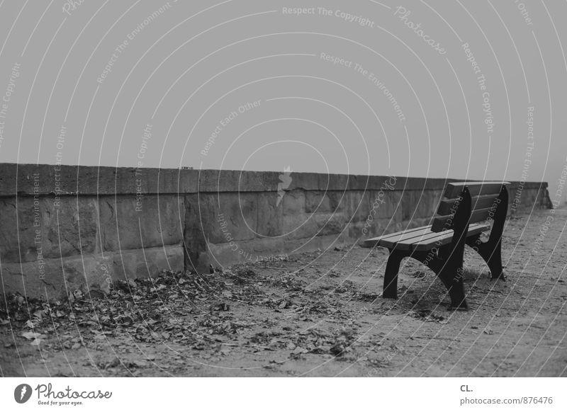 schlechte aussichten Umwelt Natur Himmel Herbst Winter Wetter Nebel Blatt Park Menschenleer Mauer Wand Wege & Pfade Bank warten trist geduldig ruhig Traurigkeit