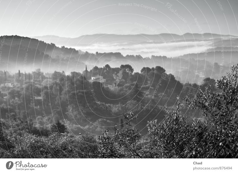 Provence Morgen 1 Himmel Natur Ferien & Urlaub & Reisen Pflanze Sommer Baum Erholung Landschaft Blatt Tier Ferne Umwelt Herbst Freiheit Horizont Erde