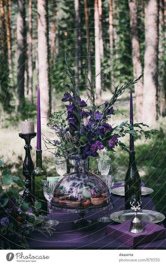 Waldmärchen Lebensmittel Kuchen Mittagessen Getränk Alkohol Champagner Lifestyle elegant Stil Design exotisch Freude Freizeit & Hobby Entertainment
