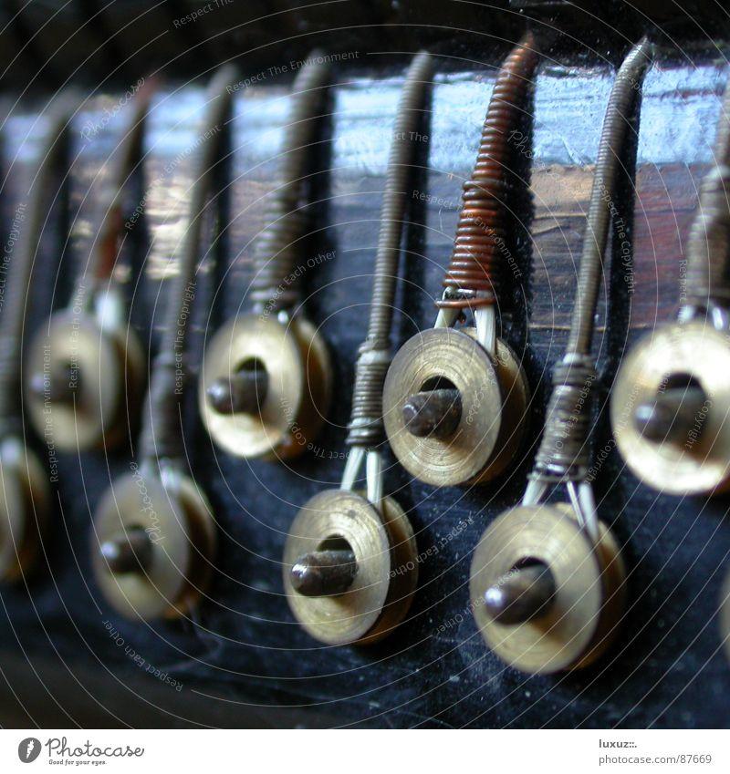 Da spielt die Musik alt Musik Stimmung Alpen Konzert hören Draht harmonisch Ton Klang Musikinstrument Lied Alm Nervosität Weisheit Musiker