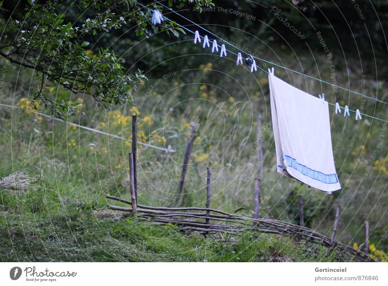 Leine Garten natürlich Wäscheleine Handtuch trocknen Wäsche waschen retro Landleben Baum Farbfoto Außenaufnahme Textfreiraum links Textfreiraum unten Tag