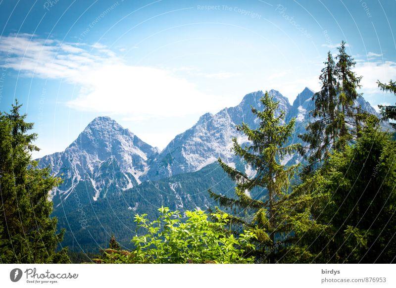 die Zugspitze Ferien & Urlaub & Reisen Sommerurlaub Himmel Wolken Schönes Wetter Tanne Wald Berge u. Gebirge ästhetisch positiv Natur Bundesland Tirol Aussicht
