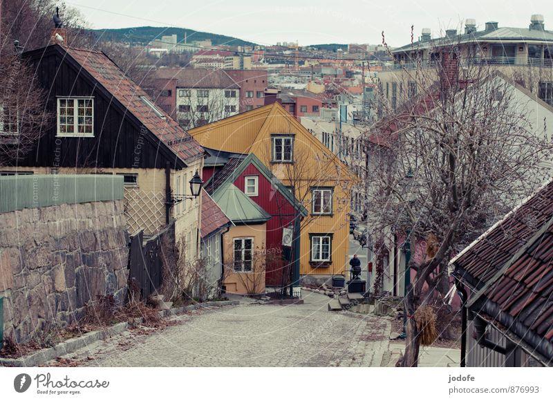 Oslo Norwegen Stadt Hauptstadt Altstadt Menschenleer Haus alt historisch einzigartig schön gelb Senior Tourismus Tradition Mischung Spazierweg Winter Frühling