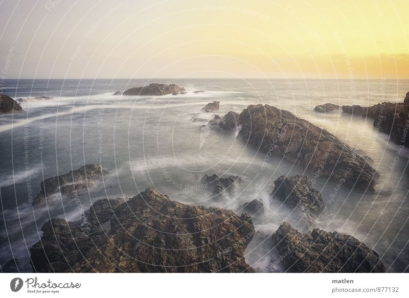 Auslaufmodell l Wasser.betrieb Natur Landschaft Himmel Horizont Sonnenaufgang Sonnenuntergang Sommer Wetter Schönes Wetter Felsen Küste Riff Meer blau braun