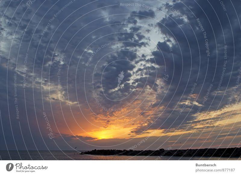 Nordhimmel Natur Landschaft Luft Himmel nur Himmel Wolken Gewitterwolken Horizont Sonne Sonnenaufgang Sonnenuntergang Sonnenlicht Sommer Wetter Schönes Wetter