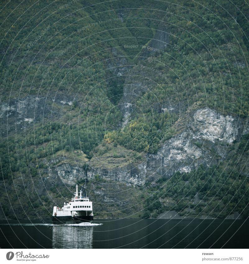 schiff Hügel Felsen Berge u. Gebirge Küste Bucht Fjord Meer Schifffahrt Kreuzfahrt Bootsfahrt Passagierschiff Kreuzfahrtschiff grün Norwegen Farbfoto