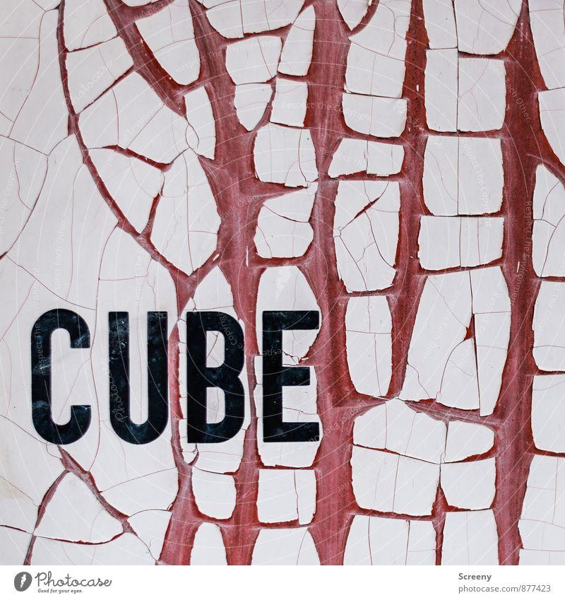 Cube in the Q | UT Köln alt weiß rot schwarz Farbstoff Schriftzeichen Vergänglichkeit Verfall Riss abblättern Container Farben und Lacke