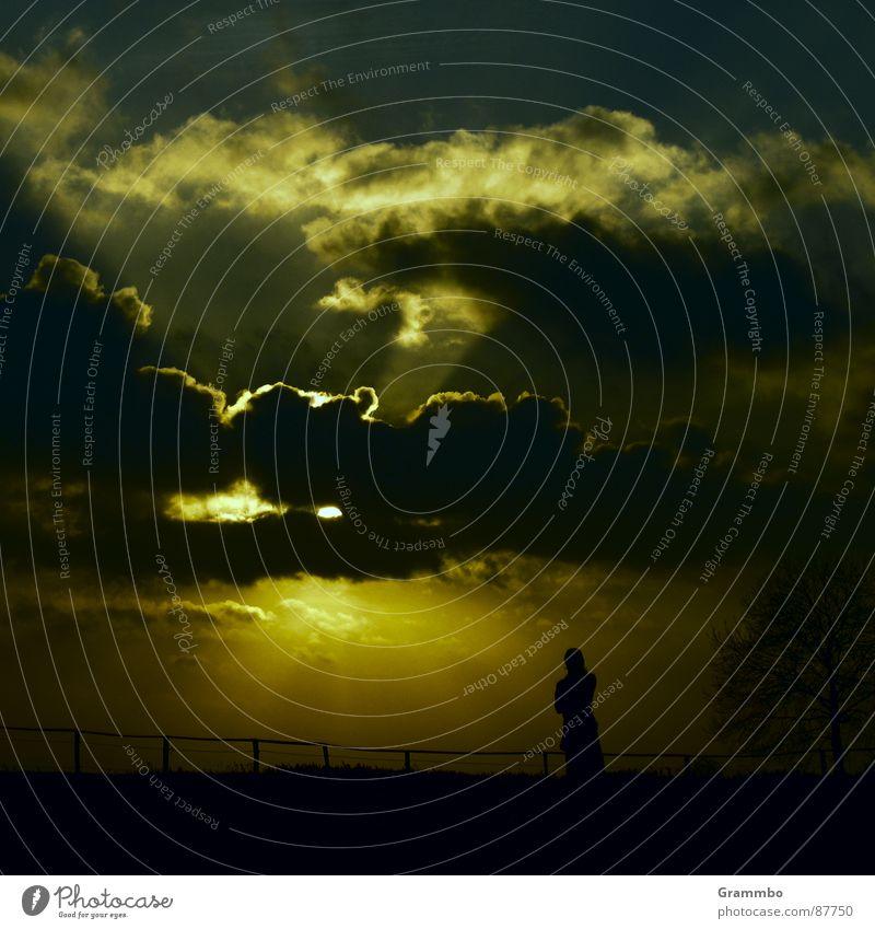 Marisa telefoniert und verpasst beinahe den Sonnenuntergang Himmel Ferien & Urlaub & Reisen Strand Wolken Ferne Landschaft gelb Holz Küste Glück