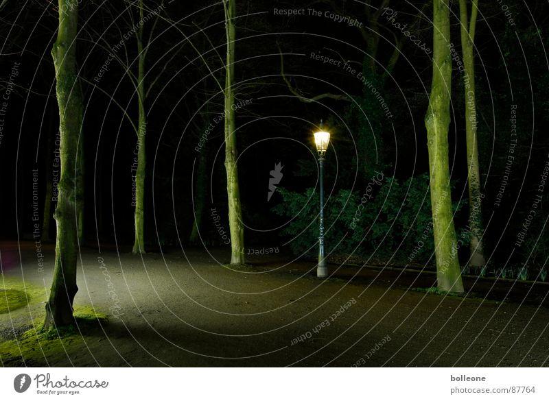 Erleuchtung Romantik bedrohlich geheimnisvoll Verkehrswege mystisch unheimlich Nachtstimmung