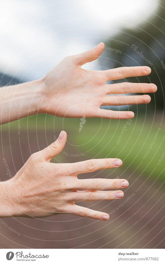 11 Finger Mensch feminin Junge Frau Jugendliche Hand 18-30 Jahre Erwachsene dünn lang blau braun grün Fingernagel Farbfoto mehrfarbig Außenaufnahme