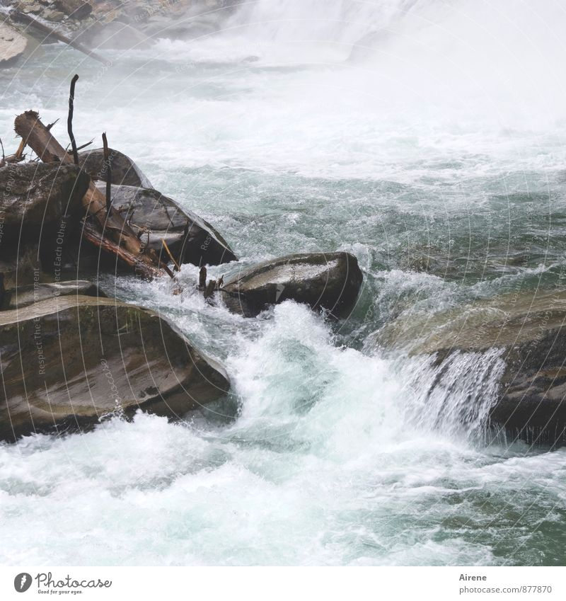 Wasserkraft Natur blau grün weiß Wasser Holz Stein wild Kraft gefährlich Urelemente Abenteuer Alpen Baumstamm Wut Flussufer