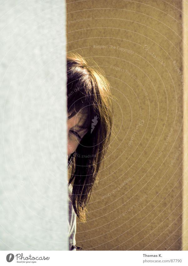 |)| Mauer Fassade z Scheitel Blick Ecke Wand Besitz duofinalisierung haus halten zelebrieren schallmauer Liegenschaft unbewegliches Eigentum mauersims