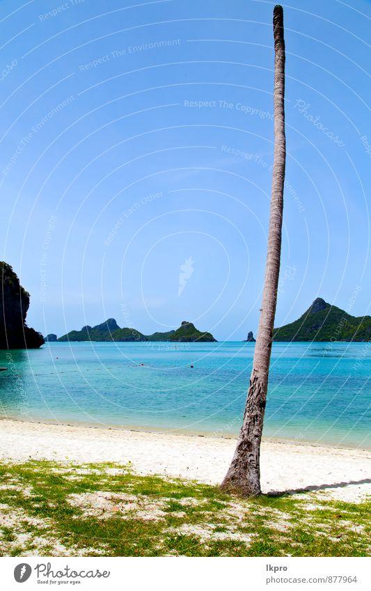 Himmel Natur Ferien & Urlaub & Reisen blau schön Sommer Baum Erholung Meer Landschaft Wolken Strand schwarz gelb Gras Küste