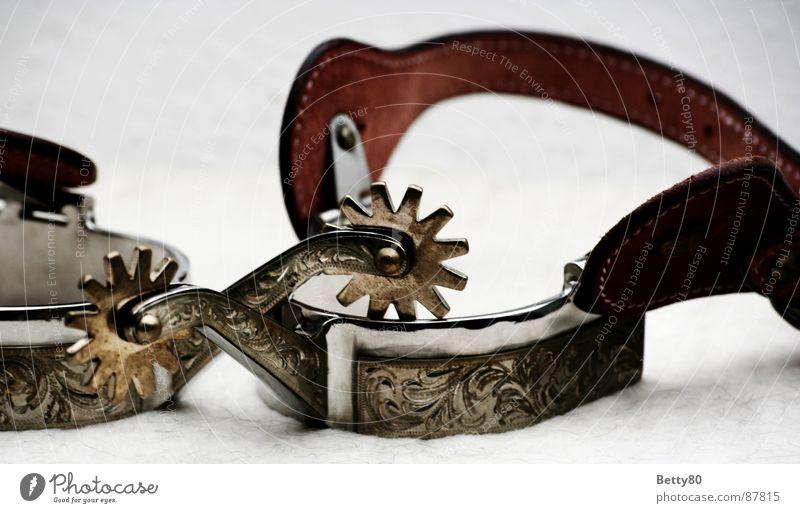 Warum haben Cowboys Rädchen an ihren Sporen?! Dekoration & Verzierung Pferd Rad Reitsport Western Medien Reiter verziert