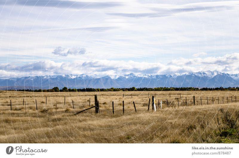 weißes gold auf den gipfeln Natur Landschaft Ferne Winter Umwelt Herbst Jahreszeiten Schneebedeckte Gipfel herbstlich Neuseeland