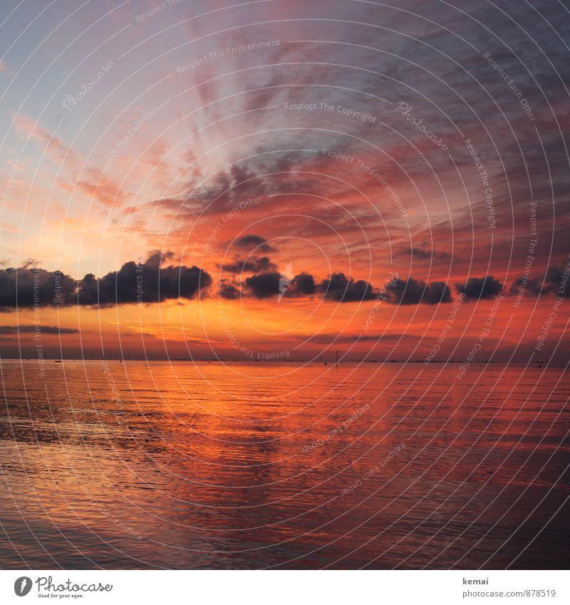 Morgenrot Himmel Natur schön Wasser Sommer Meer ruhig Wolken Umwelt Stimmung Horizont Schönes Wetter Urelemente Romantik Nordsee Wasseroberfläche
