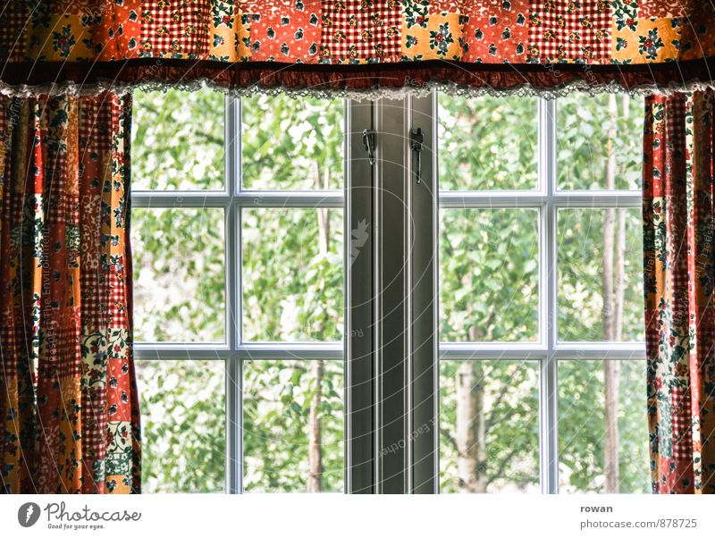fenster ins grüne Häusliches Leben Wohnung Garten Innenarchitektur Dekoration & Verzierung Haus Fenster Vorhang Gardine Baum Farbfoto Innenaufnahme Tag