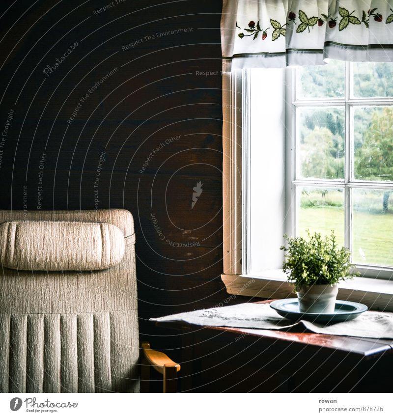 sessel Häusliches Leben Wohnung Haus einrichten Dekoration & Verzierung Möbel Sessel Fenster Erholung gemütlich Pause Zimmerpflanze Aussicht Fensterblick