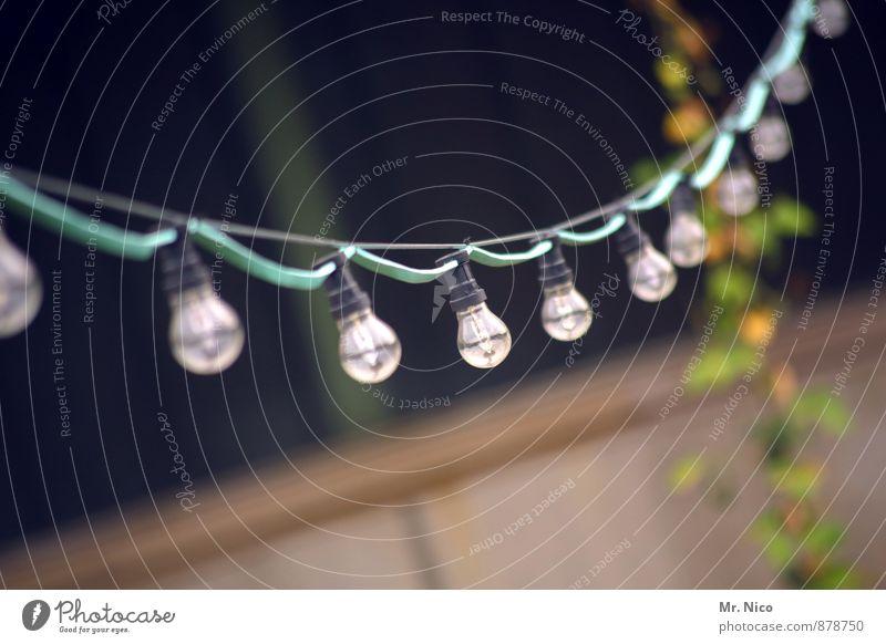 Kölner Lichter | UT Köln Sommer Garten Party Veranstaltung Pflanze hängen Lampe Glühbirne Lichterkette Beleuchtung Kabel Gartenfest Elektrizität aufgereiht
