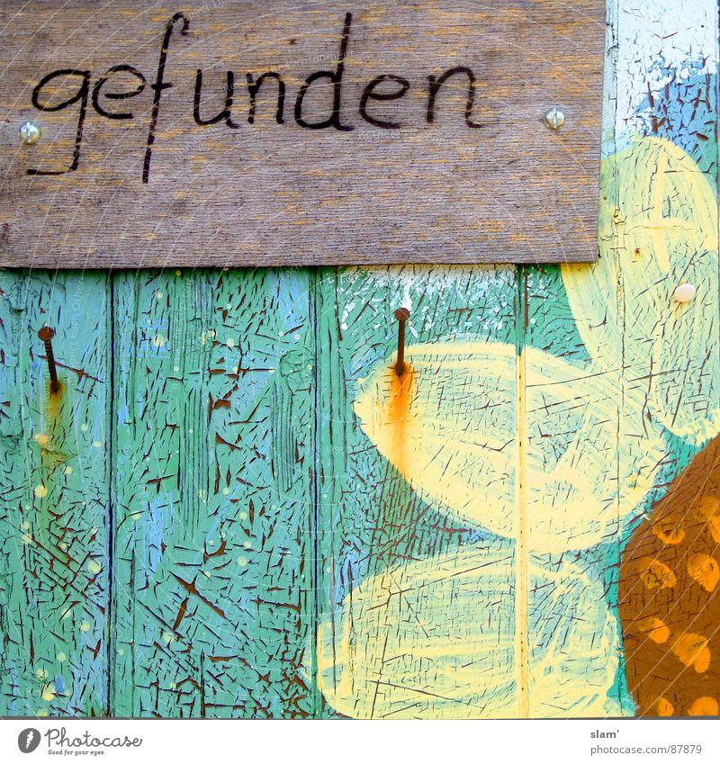 hab ich dich endlich! alt Blume gelb Farbe Frühling streichen Verfall Rost Hinweisschild türkis Sonnenblume Nagel finden Symbole & Metaphern aufhängen schrauben