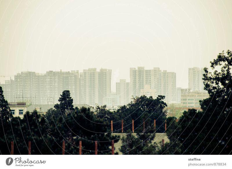 naturbanes Peking Landschaft Baum China Skyline überbevölkert Haus Stadt Smog Kontrast Außenaufnahme Textfreiraum oben Panorama (Aussicht)