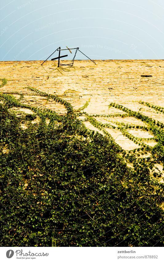 Unerklärliches Detail Himmel Natur alt Stadt Pflanze Sommer Haus Umwelt Wand Architektur Mauer Wohnung Häusliches Leben Klima Schönes Wetter Dach