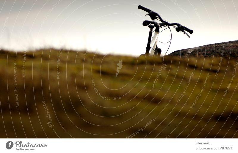 übernBerg grün Ferien & Urlaub & Reisen dunkel kalt Wiese Gras Berge u. Gebirge Traurigkeit Landschaft Fahrrad Nebel nass Ausflug Rasen feucht Weide