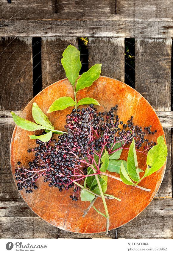 Elder Zweig mit Blättern und Beeren Ernährung Bioprodukte Lifestyle Garten Natur Pflanze Sommer Herbst Holunderbeeren alt Holz Schneidebrett Tisch Außenaufnahme