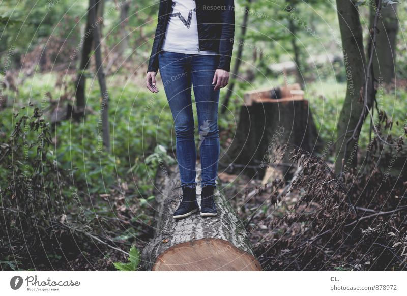 stumpf ist trumpf Mensch feminin Junge Frau Jugendliche Erwachsene Leben 1 18-30 Jahre Umwelt Natur Landschaft Baum Wald Mode T-Shirt Jeanshose Jacke Lederjacke