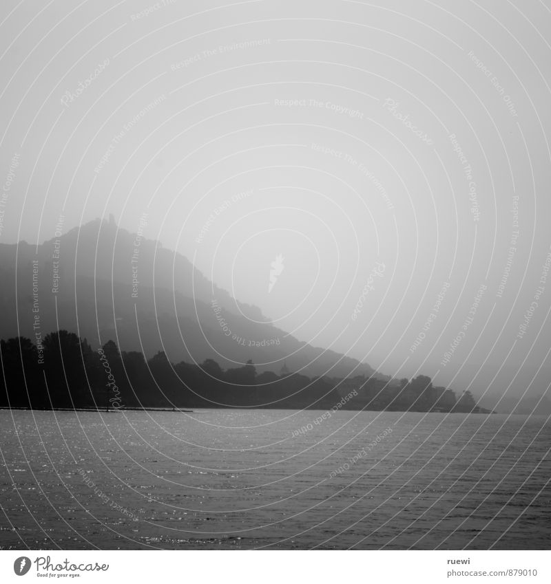 Drachenfels Tourismus Ausflug Sightseeing Städtereise Landschaft Wasser Horizont Sommer Herbst Nebel Berge u. Gebirge Siebengebirge Küste Flussufer Rhein Stadt