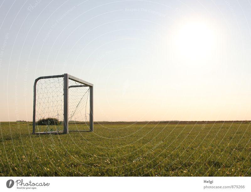 nix los... Sport Ballsport Fußball Fußballplatz Fußballtor Umwelt Natur Landschaft Pflanze Himmel Sonnenlicht Sommer Schönes Wetter Gras Grünpflanze Wiese