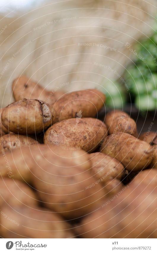 frische Kartoffeln Natur Gesundheit braun Lebensmittel dreckig Erde authentisch Ernährung rund Gemüse lecker Bioprodukte exotisch Markt Vegetarische Ernährung