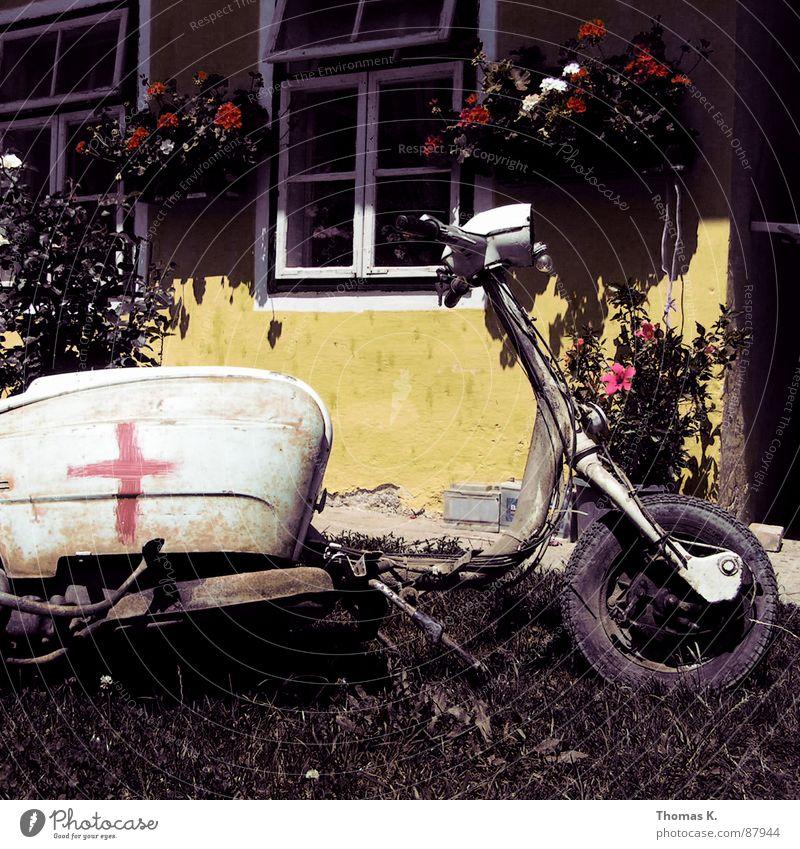 Quadrophenia ist lange her.... alt Blume gelb Fenster Gras Rücken Vergänglichkeit Rasen Kleinmotorrad Lack Gabel Sanieren Motorrad Schrott Fahrradlenker Besteck