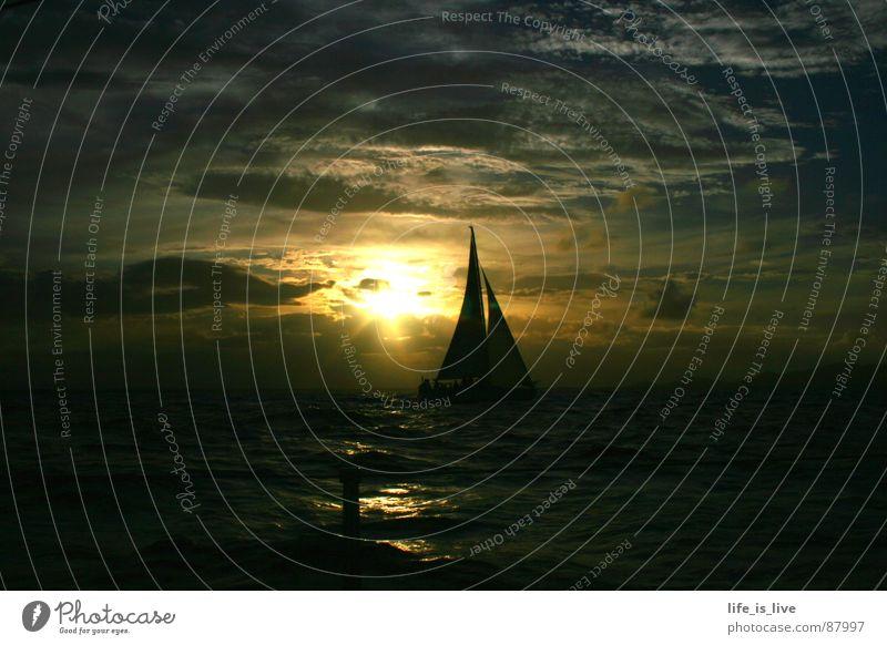 before_sunset Segeln Segelschiff Sonnenuntergang Meer Segeltörn Wellen schön traumhaft Regatta himmlisch Schifffahrt Farbe Wasser Himmel sailing Natur