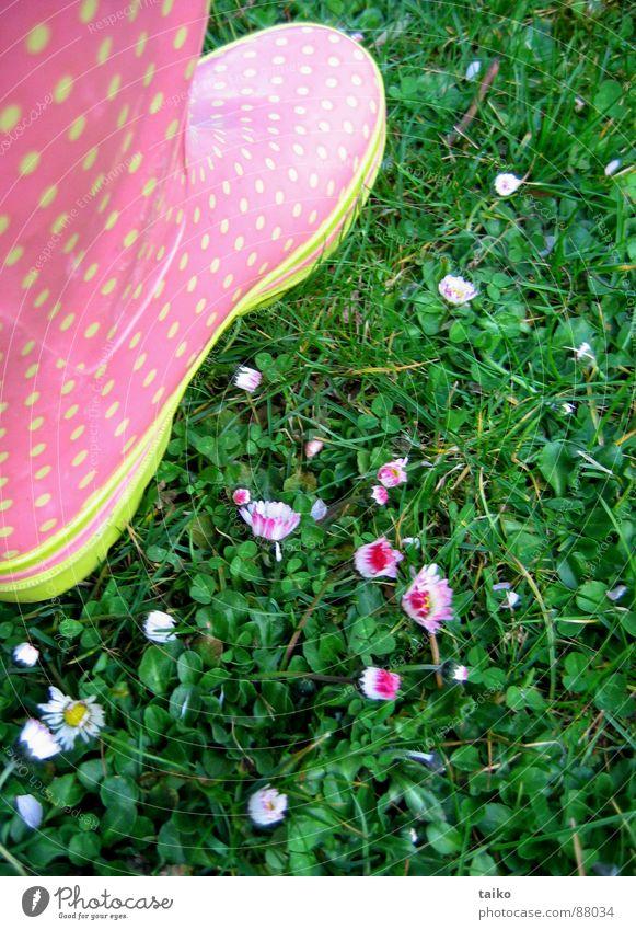Rosa's gumboots I Blume grün gelb springen Gras Frühling Schuhe rosa Bekleidung Rasen Stiefel Gänseblümchen Fleck saftig Wiesenblume Gummistiefel