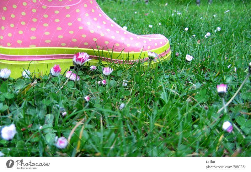 Rosa's gumboots II Blume grün gelb springen Gras Frühling Schuhe rosa Bekleidung Rasen Stiefel Gänseblümchen Fleck saftig Gummistiefel getupft