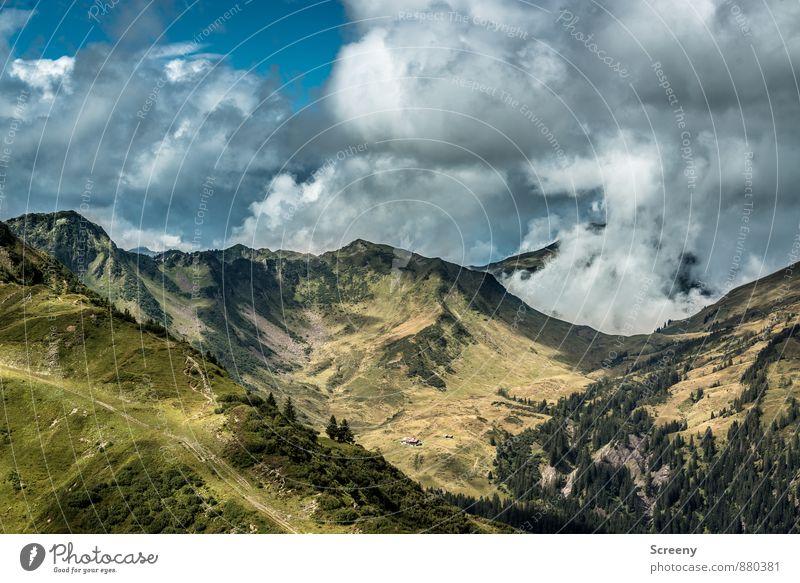 Starzeljoch / Alpe Himmel Natur Ferien & Urlaub & Reisen blau Pflanze grün Sommer Landschaft ruhig Wolken Ferne Berge u. Gebirge grau Freiheit braun Felsen