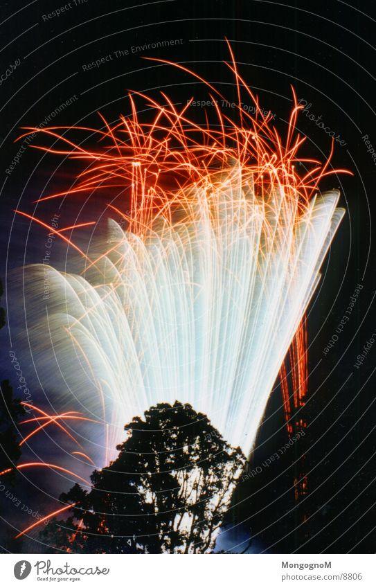 Feuerwerk4 Nacht mehrfarbig rot Baum Langzeitbelichtung hell Funken