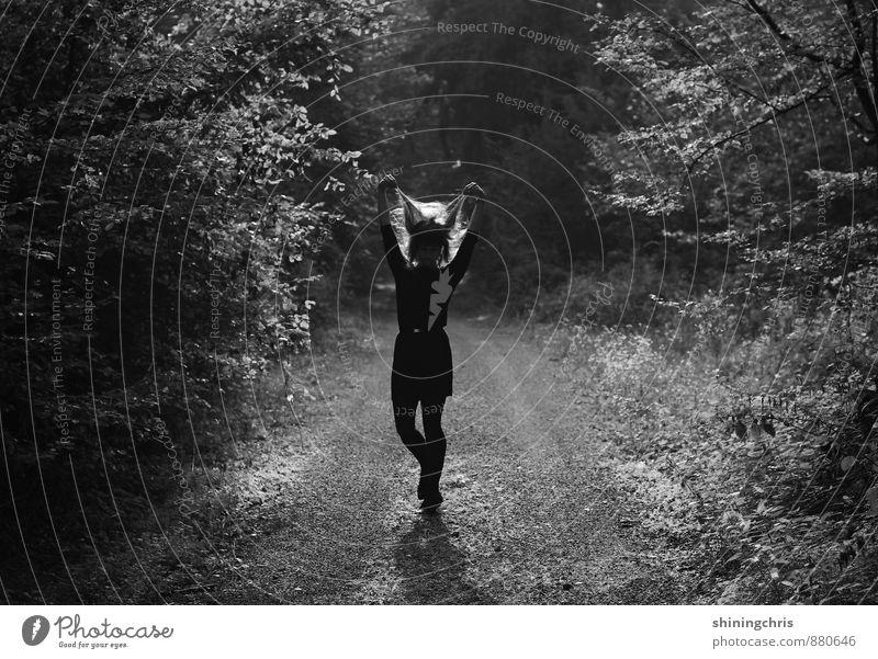 good hair day - heute mal anders. Mensch Frau Natur Jugendliche Baum Landschaft 18-30 Jahre dunkel Wald Erwachsene Herbst feminin Wege & Pfade Haare & Frisuren außergewöhnlich gehen