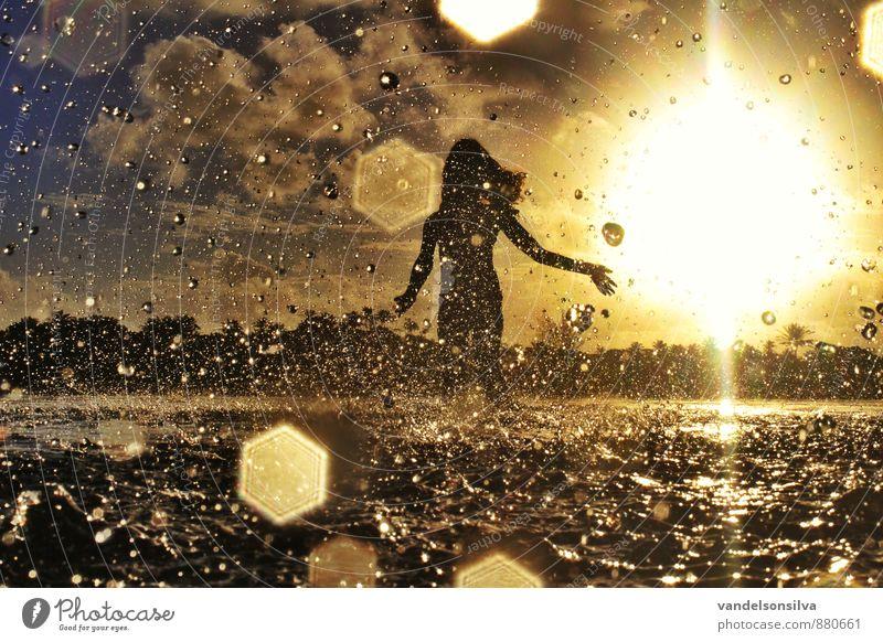 Himmel Natur Pflanze Wasser Sonne Landschaft Wolken Tier Strand schwarz Wald Umwelt gelb Küste Haare & Frisuren See