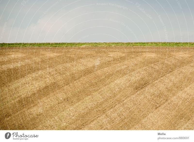 Gut gekämmt ist halb gebürstet Landwirtschaft Forstwirtschaft Umwelt Natur Landschaft Erde Himmel Feld Linie Streifen Spuren gepflügt natürlich blau braun