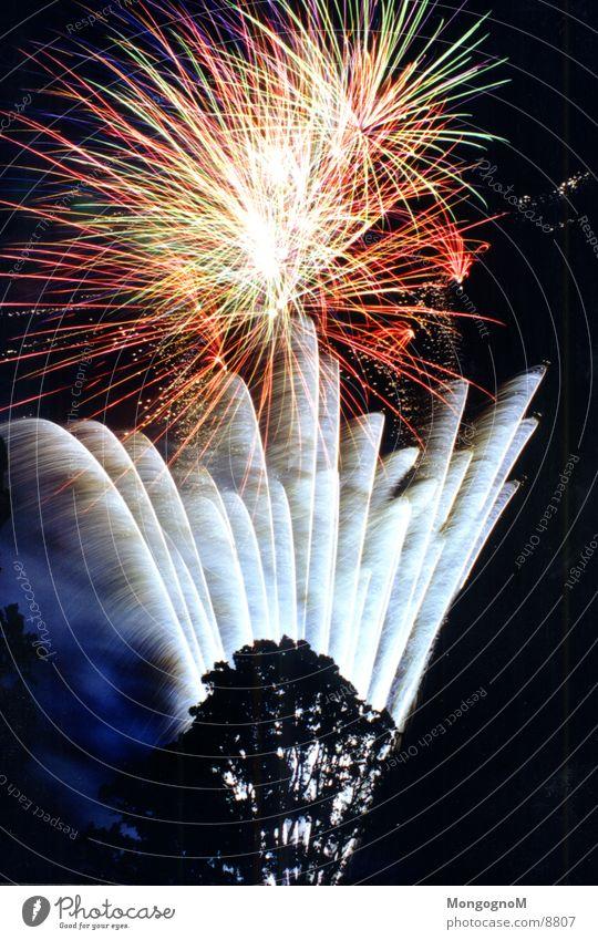Feuerwerk3 Nacht mehrfarbig rot gelb Baum Fototechnik hell Funken